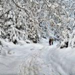 Поход в Карпаты на Новый Год