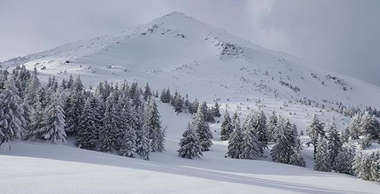 Говерла зимой. ПВД зимой. Зимний поход в Карпаты. Поход на Говерлу зимой. Петрос зимой