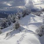 Говерла зимой. ПВД зимой. Зимний поход в Карпаты. Поход на Говерлу зимой