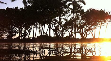 Гавайи. Треккинг на Гавайях. Активный тур на Гавайях. Ахалануи.