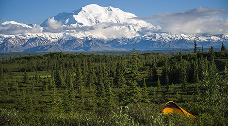 Экспедиция на Аляску. Трекинг вокруг Денали. Нацпарк Денали. Треккинг на Аляске. Денали