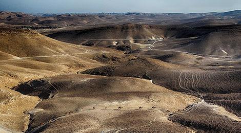 Треккинг в Иордании| Библейские края и марсианские пейзажи. Араба. Активный тур в Иордании.