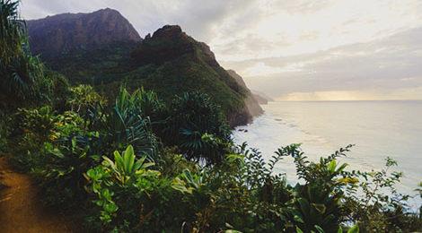 Гавайи. Треккинг на Гавайях. Активный тур на Гавайях. Кауаи.