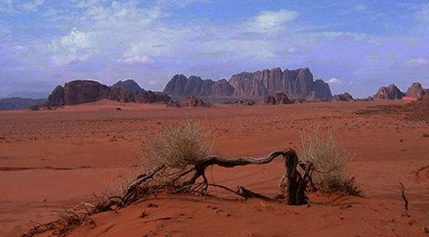 Треккинг в Иордании| Библейские края и марсианские пейзажи. Вади Рам. Активный тур в Иордании.